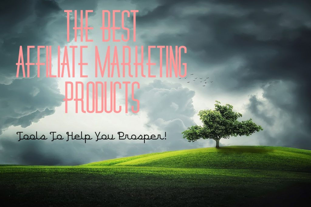 Best Affiliate Marketing Products – Necessary Tools Needed To Prosper In Affiliate Marketing