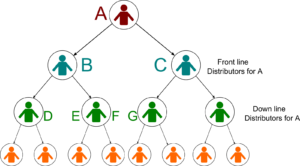 Binary MLM structure
