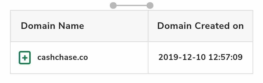 CashChase domain age